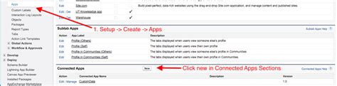 test salesforce how to test salesforce rest api using rest client