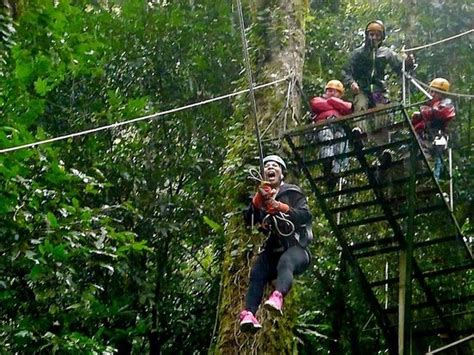Tarzan Swing Picture Of Monteverde Extremo Canopy Tour