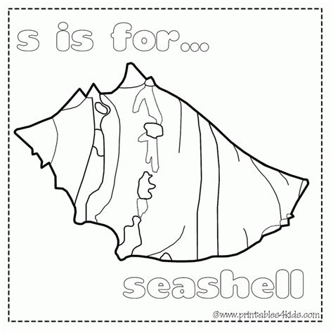 seashell coloring pages preschool printable seashell coloring pages coloring home