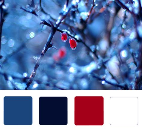 winter color schemes winter wedding colors and themes images