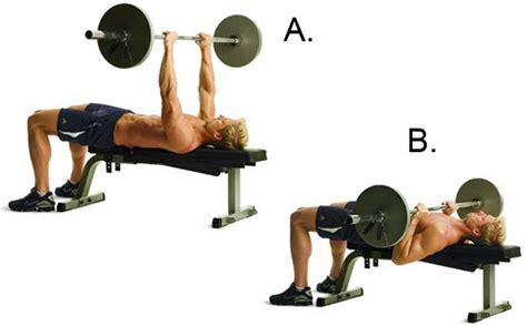 close grip barbell bench 10 biceps and triceps workout for stronger and muscular arms