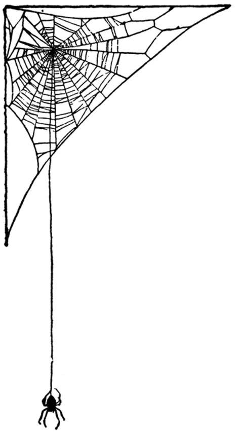 Spider Web   ClipArt ETC
