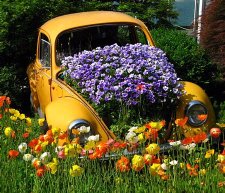 auto fiore auto creative a emissioni zero eccole come vasi da fiori
