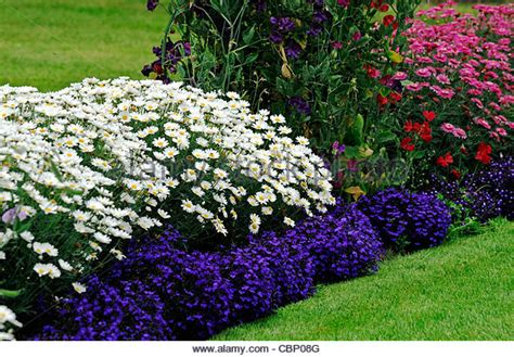 perennials bed summer stock photos perennials bed summer stock images alamy
