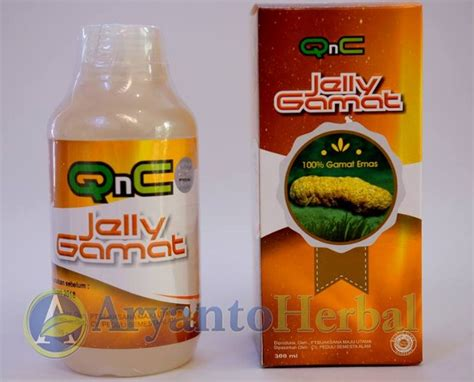Qnc Jelly Gamat Untuk Stroke obat tradisional untuk penyakit stroke ringan