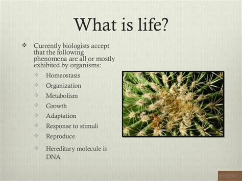 biography definition in biology biology what is life