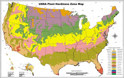 gardening zone by zip code plant hardiness and climate zones pro 1 landscaping