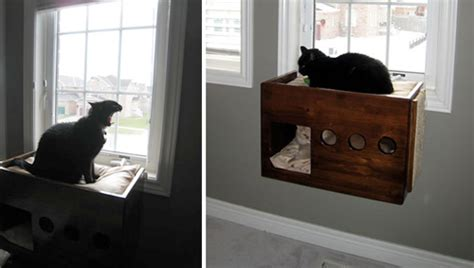how to make a cat window seat jake and karen s diy windowsill cat perch hauspanther