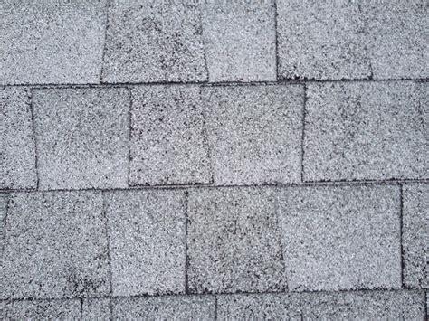 hail damage shingles brevard county fl