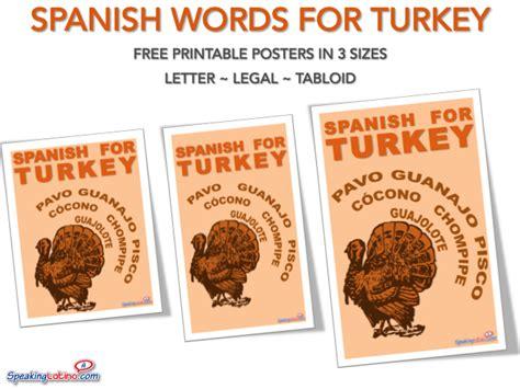 Turkey Poster Printable