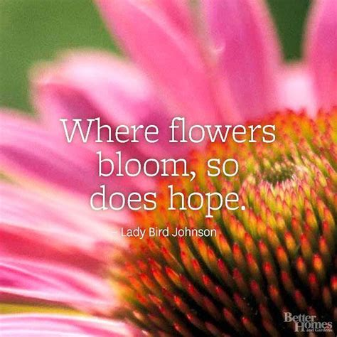 Flower Garden Quotes 17 Best Flower Quotes On Wednesday Wisdom Simple Quotes And Motto