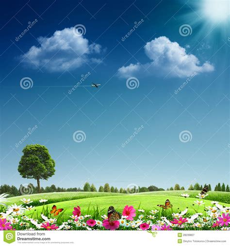 royalty free up pictures images and stock photos istock summertime stock image image of environmental concept 28239807