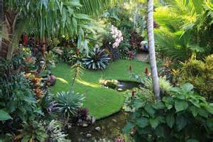 dennis hundscheidt s garden in sunnybank brisbane great home garden consult with dennis