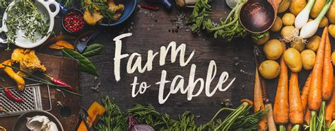 farm to table why farm to table sustainability is important