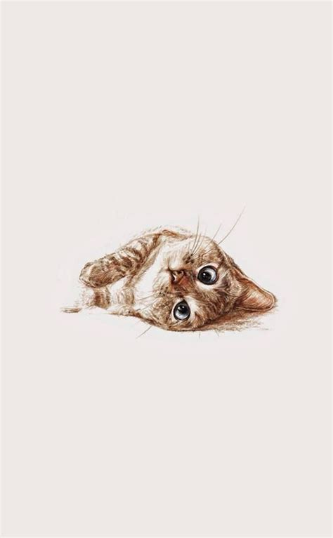 cat wallpaper pinterest 25 best ideas about cat drawing on pinterest cat