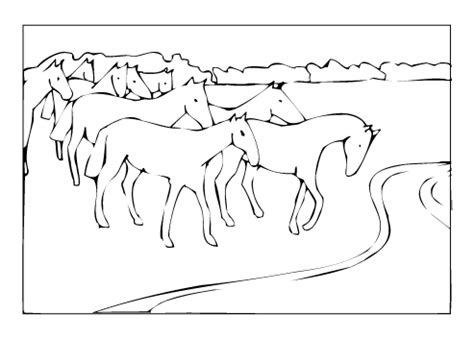 herd of horses coloring pages free horse coloring pages