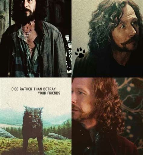 harry potter characters sirius black 565 best images about the marauders on pinterest remus