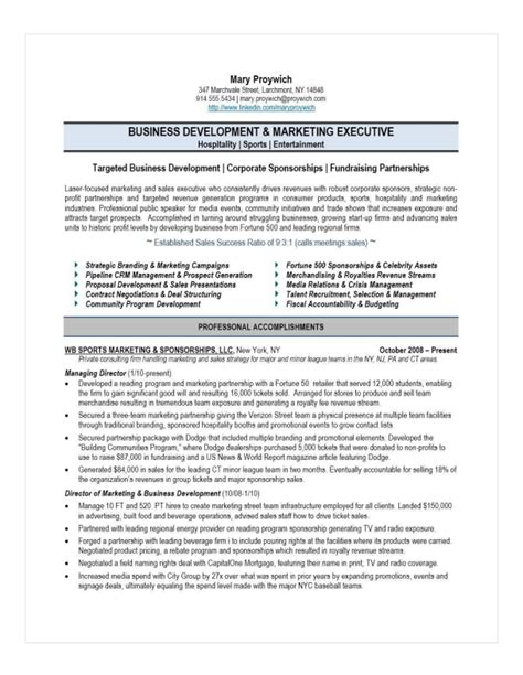 best sales executive resume examplesbest sales executive resume