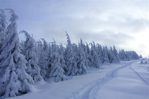 winter images brocken winter landscape photos diagrams topos summitpost
