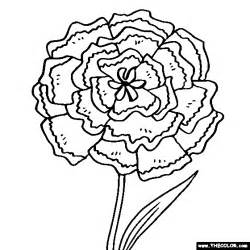 Galerry carnation flower coloring pages
