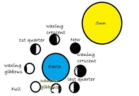 wax types diagram warm ups science isn