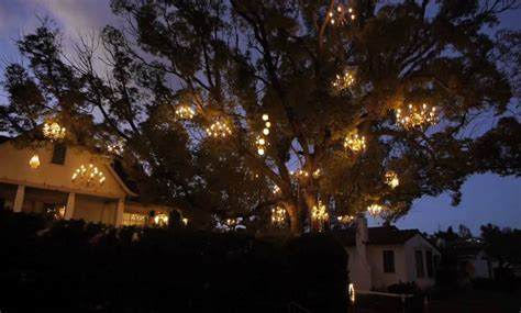 Every Branch Is Illuminated On The Chandelier Tree Rtm The Chandelier Tree