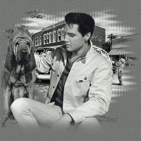 nothing but a hound you ain t nothing but a hound elvis