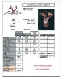 Tim beck buck antlers by klaus