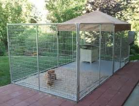 Dog Runner For Backyard Chainwire Dog Run Chainwire Fencing Specialist