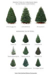 northwest tree types forest for the trees pinterest