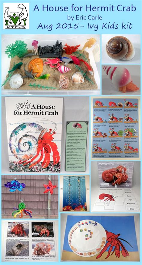 a house for hermit crab lesson plans a house for hermit crab lesson plans numberedtype