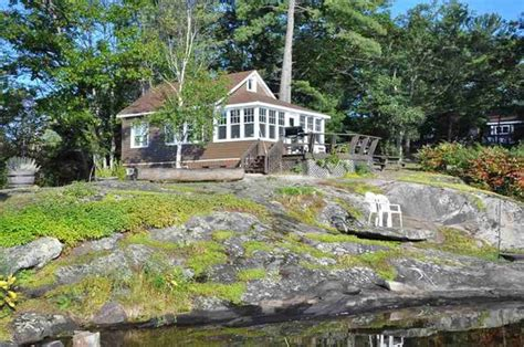 the loon picture of tea lake cottages coldwater