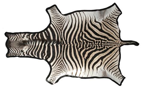 Zebra Hide Rugs by Zebra Skin Rug Traditional Rugs By 1stdibs