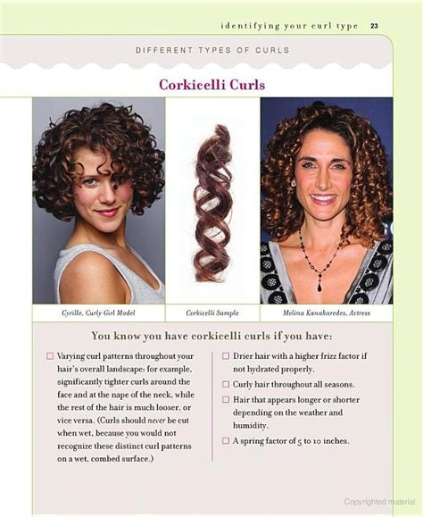 Types Of Hair Curls by Corkicelli Curls Identify Your Curl Type From Curly