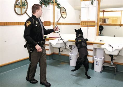 Geauga County Sheriff S Office by Kevlar K 9 Vests Protect Enforcement Team Members