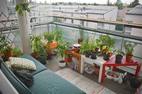 balcony gardening pictures photos and images for