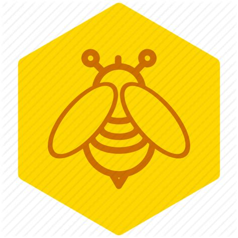 honey bee icon bee candy food honey natural sugar sweet icon icon