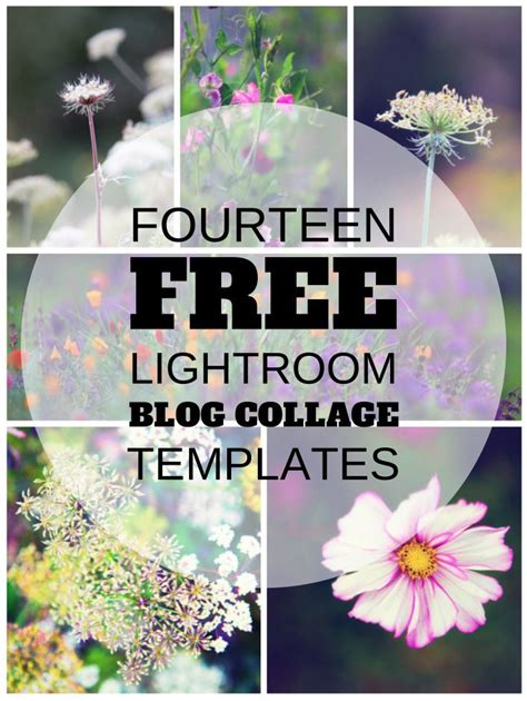 free lightroom templates collage pin by smiley on photography tutorials tips