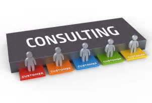 It Consulting Consulting Avionics India
