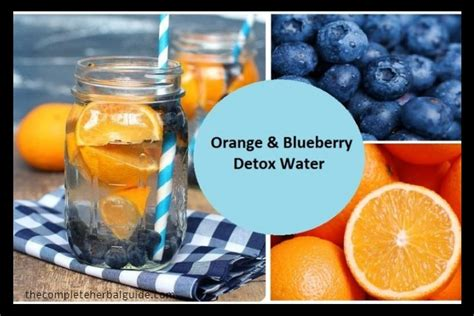 Blueberry Detox Water by 7 Healthy Recipes Apple Cider Vinegar Drink Weight Loss