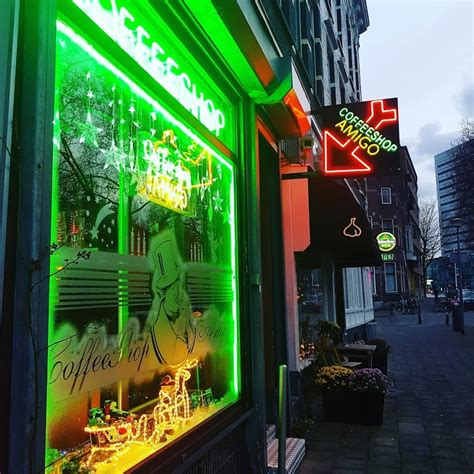 tuda fruta rotterdam coffeeshop amigo in rotterdam openingstijden menu