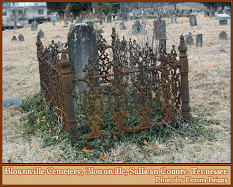 iron fences grave fences cemetery genealogy history