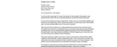 Apology Letter To Judge Sle How To Write A Letter To A Judge For Leniency 32 Images Child Support Disaster Business