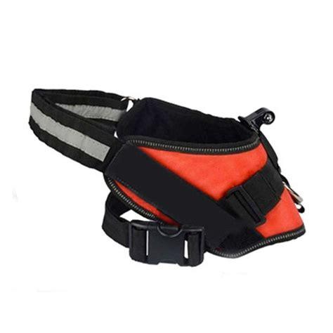 small dog & cat harness for gopro & sjcam • xtreme sport