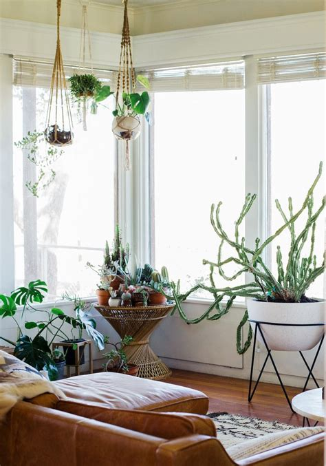 amazing diy interior design with hanging lounge in middle 569 best images about plants indoor hanging diy pots