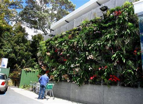 hanging garden in remuera nz s largest outdoor vertical