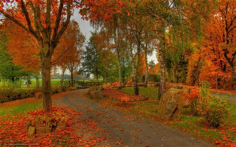 stassen fiori wallpaper germany hesse zaalburgzidlung autumn
