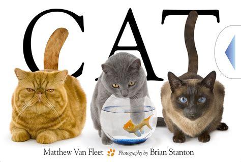 matt is a normal cat books cat book by matthew fleet brian stanton official
