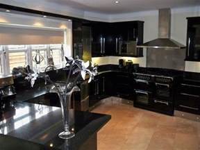 Black Kitchen Decorating Ideas Cabinets For Kitchen Kitchen Designs Black Cabinets