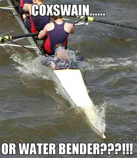 Funny Rowing Memes - 44 best images about rowing humor on pinterest anabolic